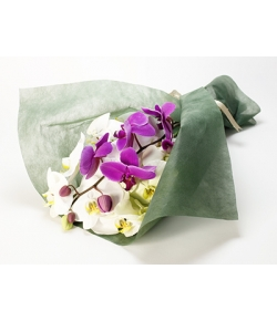 orchid bouquet to japan
